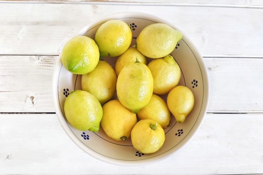 Zitronen - frisch vom Baum